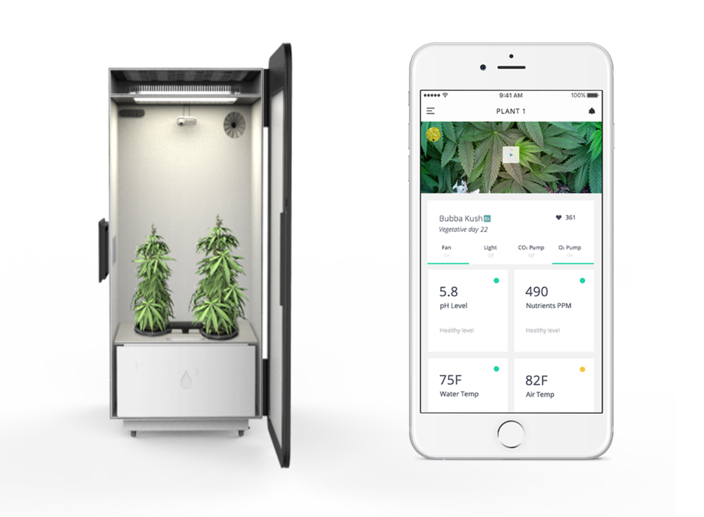 plug n plant smart growbox with iphone app. Black Bedroom Furniture Sets. Home Design Ideas